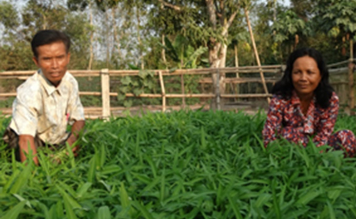 Integrated-Farming-System-of-Sister-Mom-Saphan